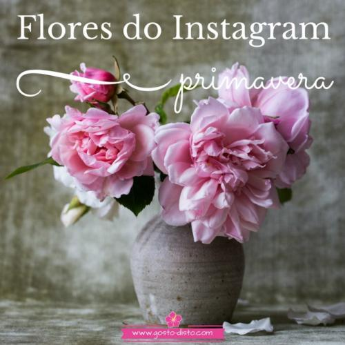 Flores do instagram para viver a primavera on line