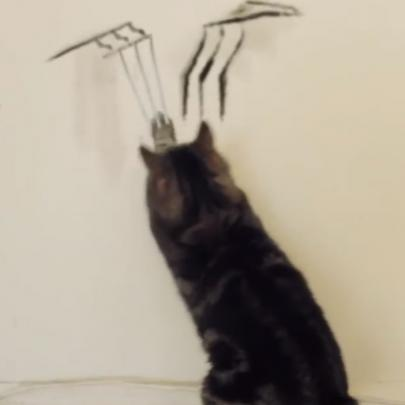E se os gatos tivessem garras como as do Wolverine?