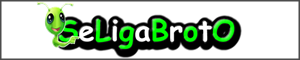 Banner do Seliga_Broto